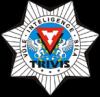 logo TRIVIS - Střední škola veřejnoprávní a Vyšší odborná škola prevence kriminality a krizového řízení Praha, s.r.o.