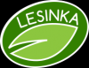 logo Dětský klub Lesinka