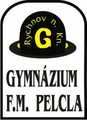 Gymnázium Františka Martina Pelcla, Rychnov nad Kněžnou