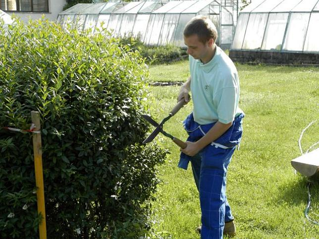 Odborný výcvik zahradníků