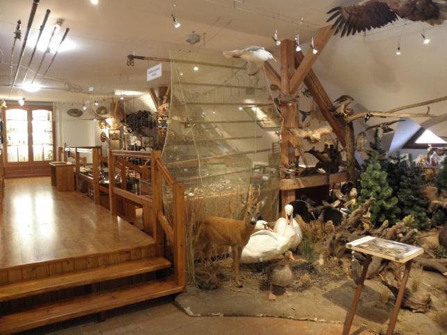 rybářské muzeum
