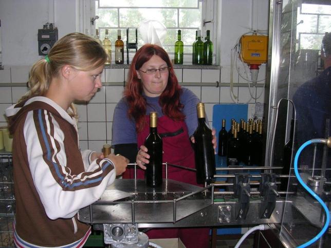 Výroba školního vína